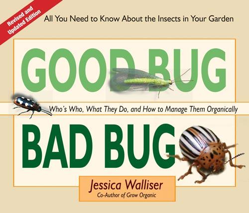 Good Bug Bad Bug by Jessica Walliser