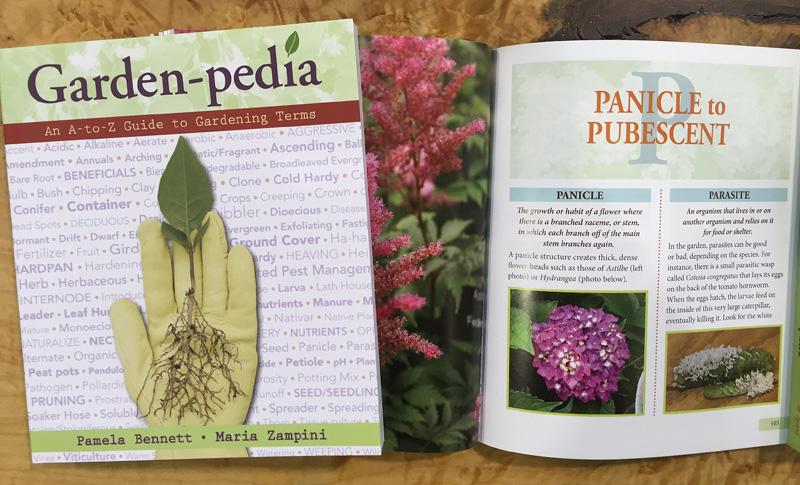 Garden-pedia-for-Slider-3-B